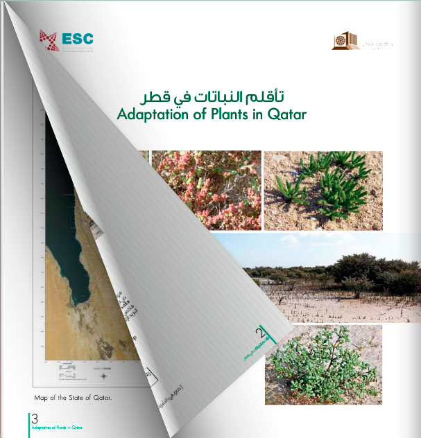 Adaptation of Plants in Qatar